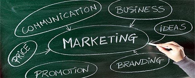 Принципы службы управления маркетингом
