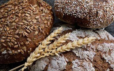 Аналитический обзор хлебного рынка