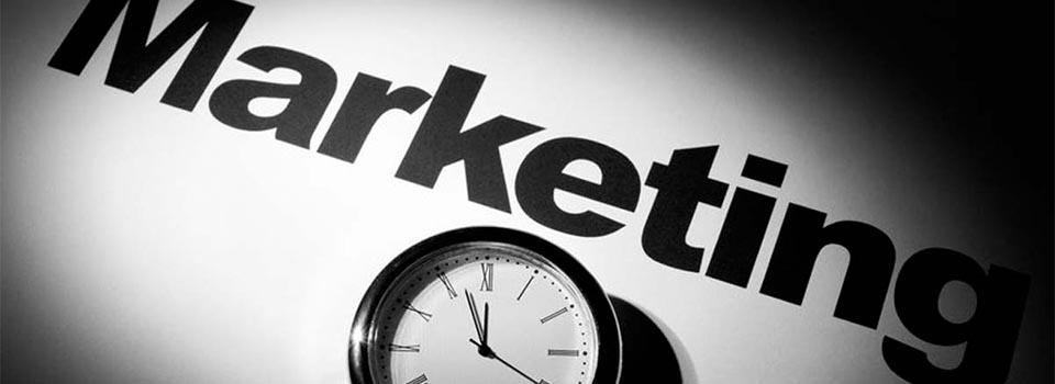 Маркетинговые компетенции сервиса для бизнеса