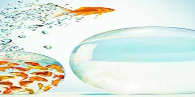 Возможности ноомаркетинга для бизнеса